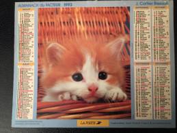 Calendrier Almanach Du Facteur 1993 , Chat Persan Et Chatons Intérieur PARIS Et Région Cartier Bresson - Calendriers