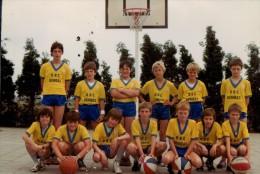 Foto Photo (10 X 15cm) Hoevenen Basket-bal Ploeg BBC Gembas - Stabroek