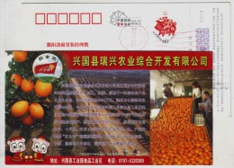 Fruit Navel Orange,China 2007 Xingguo Comprehensive Agricultural Development Company Advertising Pre-stamped Card - Fruits