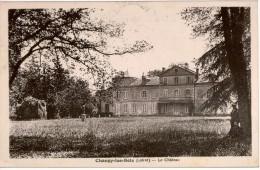 Cpa 45 CHANGY-les-BOIS   Le Château , Animée, Vue Arrière Peu Courante, Carte En Très Bon état , Au Dos Flamme Montargis - Frankreich