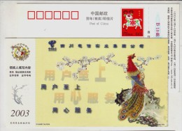 Red Peacock,peafowl Bird,China 2003 Sichuan Telecom Cousters Service Advertising Pre-stamped Card - Peacocks