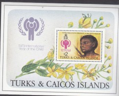 TURKS/CAICOS Is, 1979 IYC MINISHEET MNH - Turks And Caicos