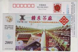 Tencel Textile Fabric Factory,Boehmeria Nivea,China 2001 Gandong Ramie Fiber Factory Advert Pre-stamped Card - Textile