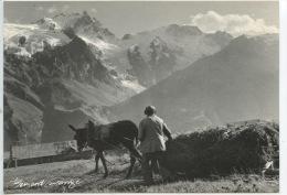 Un Certain Regard Bernard Grangé Photographe N°908 Expo Photo Valloire - Fenaison Homme Traineau Foin Cheval Ane (cp Vie - Paysans