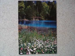 50734 SWITZERLAND: BE BERNE: Blausee - Lac Bleu - Blue Lake. - Berner Oberland.