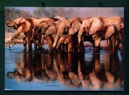 KENYA  -  African Elephants  Used Postcard As Scans - Kenya