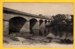 CP21 11 CARCASSONNE 93 Le Pont Neuf - Carcassonne