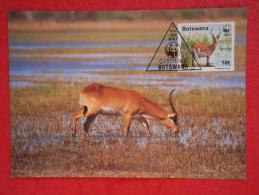 Botswana Serie World Animals Widelife Fund With 1988 Nice Stamp - Botswana