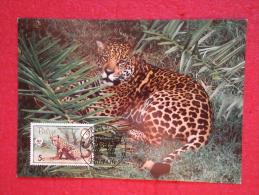Belize Serie World Animals Widelife Fund 1983 Nice Stamp - Belice