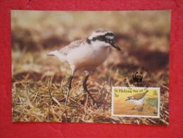 St. Helena Serie World Animals Widelife Fund 1993 Nice Stamp - Sainte-Hélène