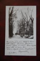 LUNEL - Allée Des Maronniers - Lunel