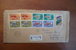 9065 ISRAEL - REGISTERED COVER TO ITALY - 1963? - MIXED FRANKING - FISH - 9 STAMPS - Israele
