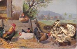 AK Hühnerhof Mit Aufgeklebtem Goldfarbenem Metalltruthahn (20913) - Ansichtskarten