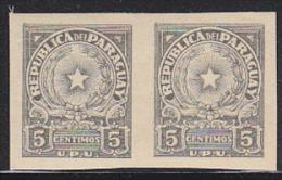 Paraguay 1946 Coat Of Arms 5c Gray Imperforate Pair. Scott 430. MVLH. - Paraguay