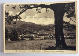 GALIZZANO PANORAMA 1940 VIAGGIATA FG - Savona