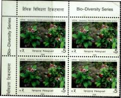 FLOWERS-SERPENTINE-BIO DIVERSITY SERIES-BLOCK OF 4-NEPAL-2008-SCARCE-MNH-B3-508 - Pflanzen Und Botanik