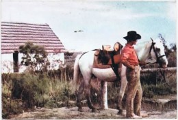 GARDIAN EN CAMARGUE - Calendriers