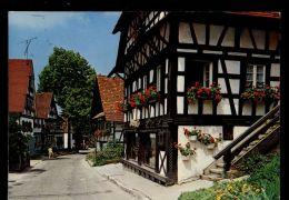 B321 SASBACHWALDEN - BLUMEN - Sasbach