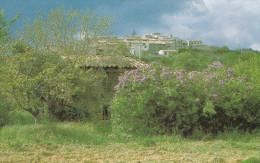 VILLENEUVE LES LILAS DU CARREFOUR ST PIERRE (DIL102) - Francia