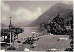 Zwitserland/Der Schweisz, Immensee Am Zugersee, See-Hotel Rigi, 1964 - SZ Schwyz
