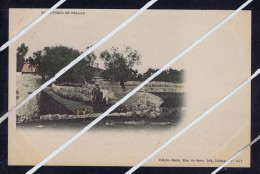 Portugal In BELAS Street Dogs Chiens Postcards  5190 - Portugal