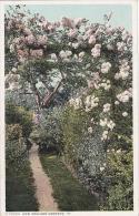 Massachusetts New England Gardens