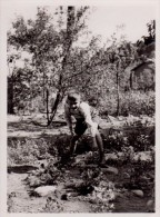 Photo Originale Enfant - Portrait D'un Jeune Garçon En 1938 - - Personnes Identifiées