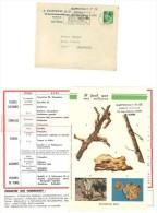 Courrier A. Castelnau & Cie, Nimes, Prospectus Engrais, Schloesing Marseille - Agriculture