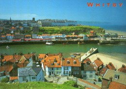 Postcard - Whitby Harbour & Lifeboat Museum, Yorkshire. 2YK144 - Whitby