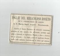 FOGLIE DEL MIRACOLOSO ROSETO DI SAN FRANCESCO DI ASSISI IN SANTA MARIA DEGLI ANGELI PORZIUNCOLA - Documentos Históricos