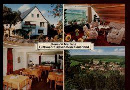 B413 LUFTKURORT - PENSION MERTENS - Germania