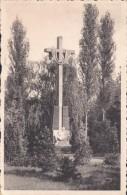Vosselaar Mariapark Pieta - Vosselaar