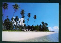 THAILAND  -  Samui Island  Chawaeng Beach  Unused Postcard As Scan - Thailand