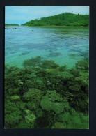 THAILAND  -  Tan Island  Unused Postcard As Scan - Tailandia