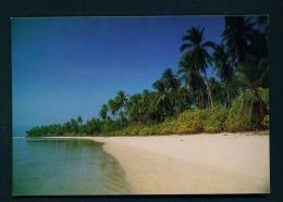 THAILAND  -  Samui Island  Unused Postcard As Scan - Tailandia