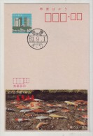 Ornamental Carp Fish,Japan 1986 Shimabara Hot Spring Resort Tourism Advertising Pre-stamped Card - Fishes