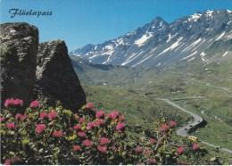 POSTAUTO  POSTBUS  AUTOBUS  BUS  FLÜELAPASS - GR Graubünden
