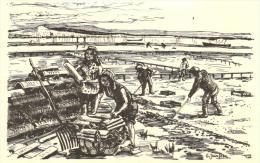 94205 -  Illustrateur G.Jeanjean  Bassin D'Arcachon (33) Reproduction    Série M 13   N° 269    Parqueuses D'Huitres - Otros Ilustradores