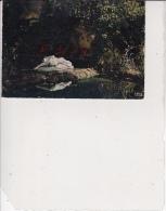 Nérac En Albret - Parc De La Garenne, Ref 1512-956 - Nerac