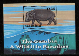 (cl.11 - P.10) Gambie ** Michel Bloc N° 564 (ref. Michel Au Dos) - L'hippopotame - - Gambie (1965-...)