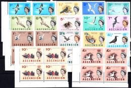 ASCENSION - N° 76/89 - OISEAUX - SERIE COMPLETE EN BLOC DE 4 - COIN DE FEUILLE - LUXE - Ascension (Ile De L')