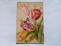 FLEURS   ILLUSTRATEUR  MILLOT  :  TULIPES - Fleurs