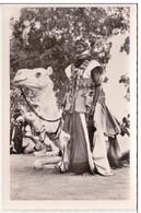 CP Photo Partisan Méhariste  Collection G. LABITTE - Niger