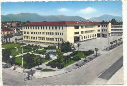 PORDENONE  CENTRO STUDI VIAGGIATA FG - Pordenone
