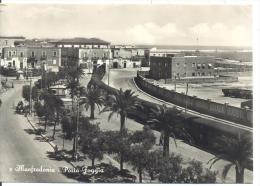 MANFREDONIA PORTA FOGGIA  VIAGGIATA S/FRANCOBOLLO FG - Manfredonia
