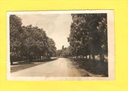 Postcard - Croatia, Velika Gorica      (21427) - Croatia