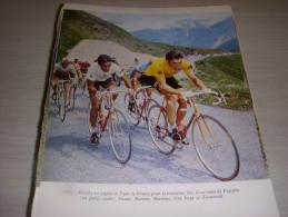 CYCLISME COUPURE LIVRE COULEUR MERCKX LUIS OCANA Au Dos VAN IMPE ZOETEMELK - Sport