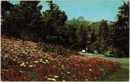 Fern Dell Drive Entrance to Griffith Park, LA, CA