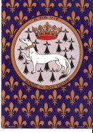 Cpm Cpsm Anne De Bretagne - Unclassified