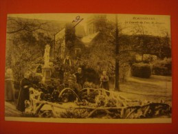 ECAUSSINNES --- La Cascade Du Parc M Druart - 1904 - Ecaussinnes